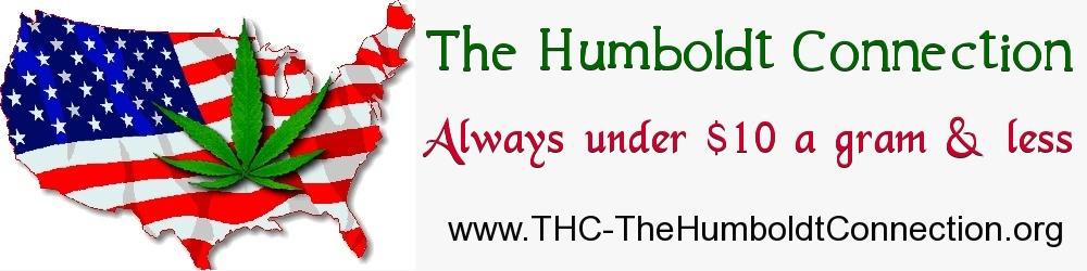 THC Banner