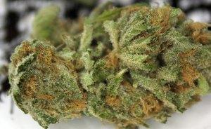 grunk marijuana
