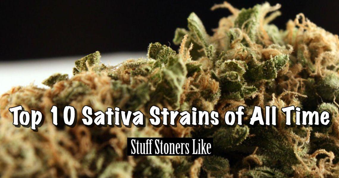 Sativa Strains