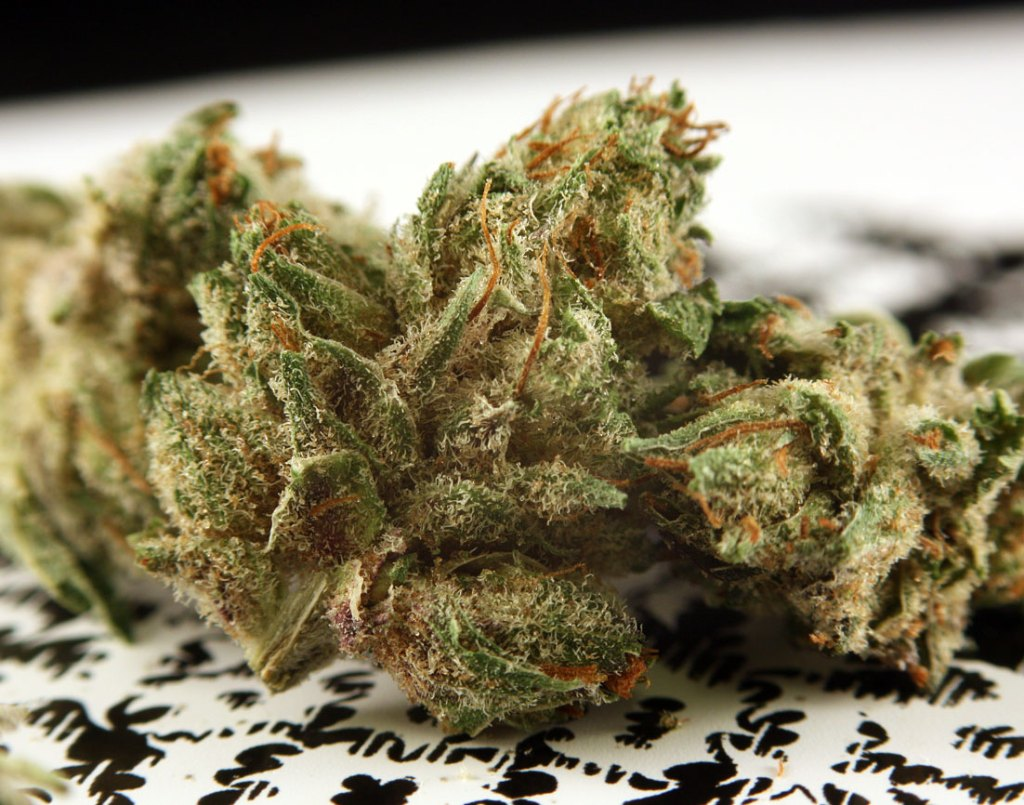 How Much Does Weed Cost? From Grams, to Ounces, to Pounds ...