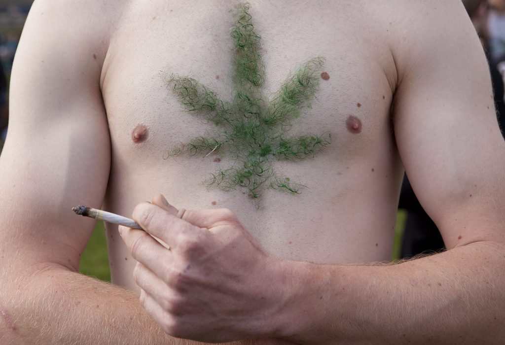 how long does weed stay in your body hair