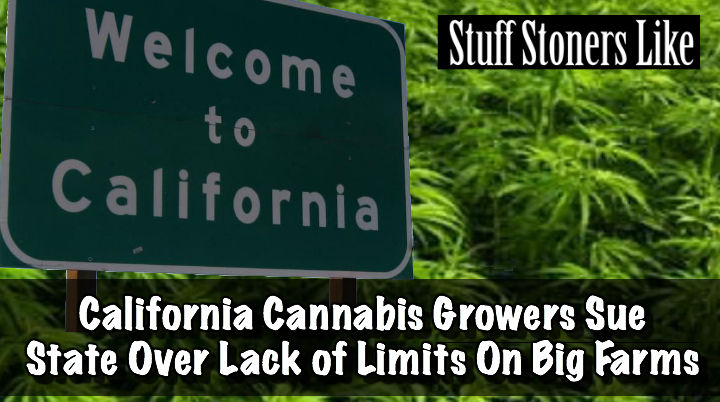 CA growers