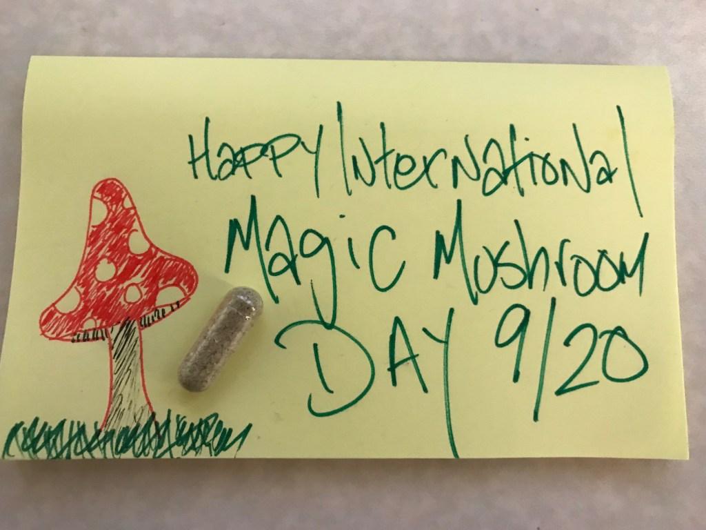 9_20 Magic Mushroom Day 2
