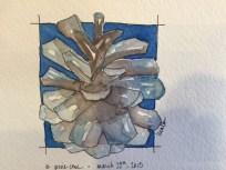 hedy pine cone sketch