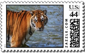 Siberian Tiger US Mail Postage stamp