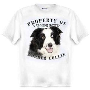 Border Collie boss t-shirt