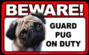 Beware Guard Pug On Duty Sign