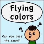flyong colors