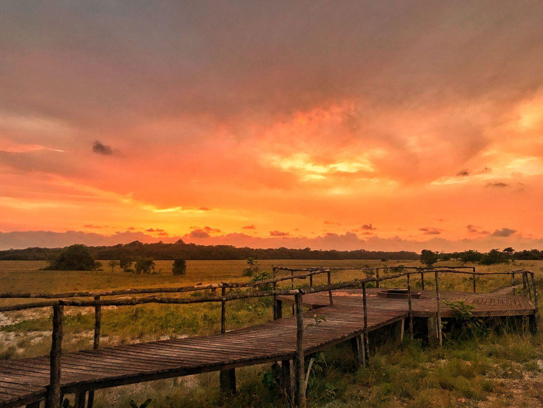 Tassi Camp, Loango National Park