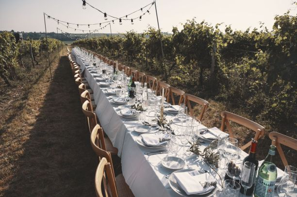 La Vue France - Wedding Breakfast- Table in Vineyard - StuJarvis.com