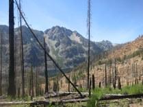 Burnt landscapes + scorching sun + 60ish miles = not fun.