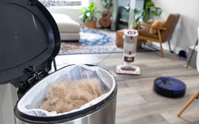 The Best Products For Controlling Dog Hair