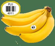 Bananabf3a7cac-eb4e-4754-9725-65c0f2c19793