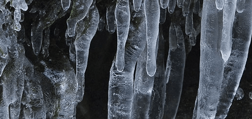 icicles