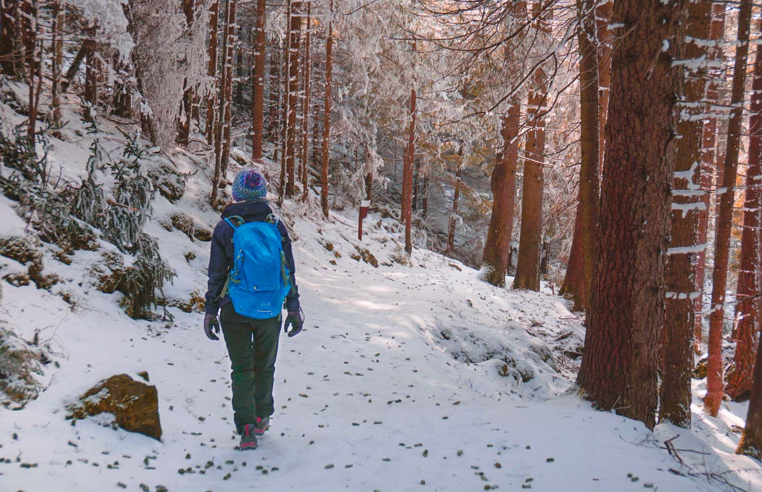 winter hikes in europe