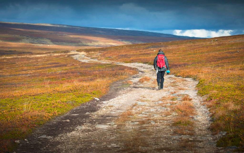 hike to Nattfjelldalen