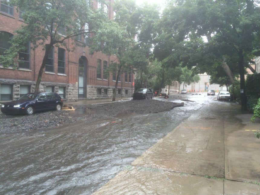 L'avenue Brewster dans le Sud-Ouest aura besoind'un bon nettoyage
