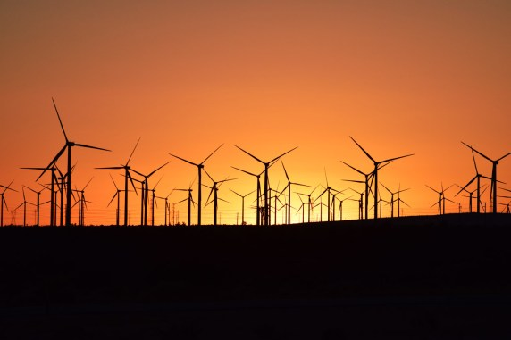 mohave-windmills2