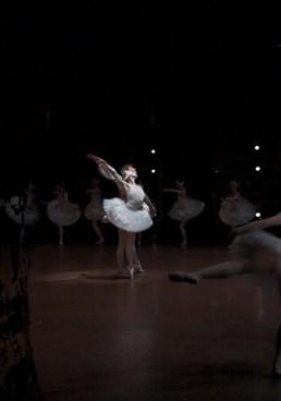 Swan Lake: Performance with Alicia Amatriain (Odette/Odile) and Friedemann Vogel (Siegfried)