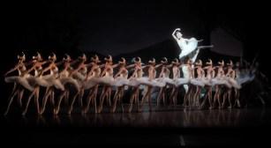 """Japan-Gastspiel, """"Schwanensee"""": Alicia Amatriain (Odile), Friedemann Vogel (Prinz Siegfried), Ensemble, Foto: Stuttgarter Ballett"""