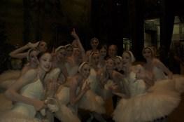 """Japan-Gastspiel, """"Schwanensee"""": ohne Worte, Foto: Stuttgarter Ballett"""