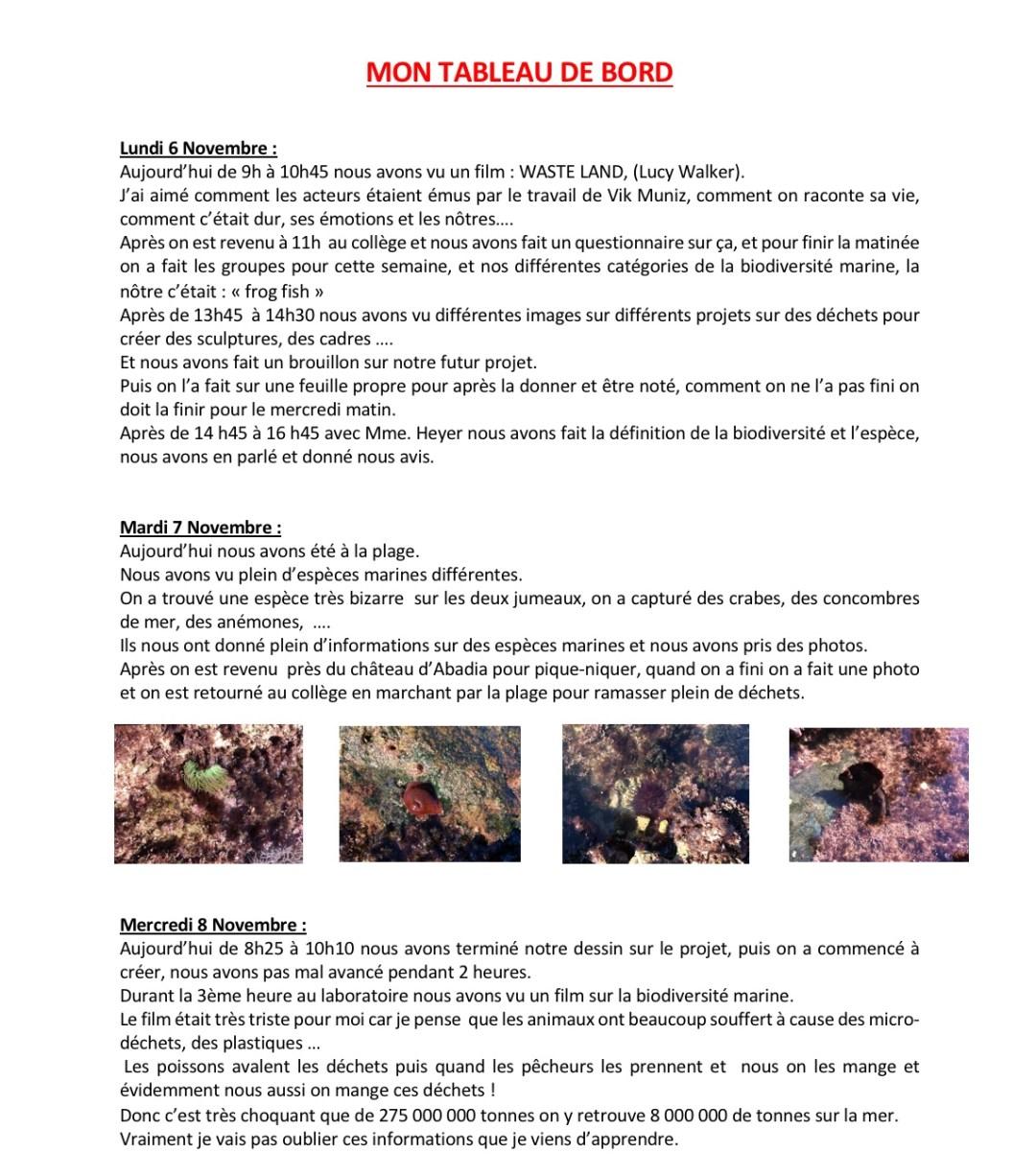 Journal de bord de Claudia 4ème A - page 1