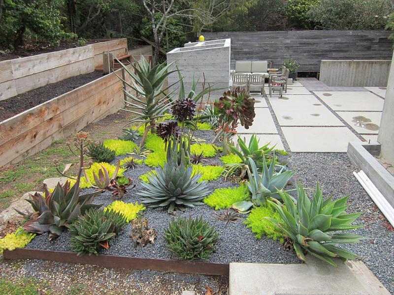 Desert Landscaping: How To Create Fantastic Desert Garden ... on Desert Landscape Ideas For Backyards id=44954