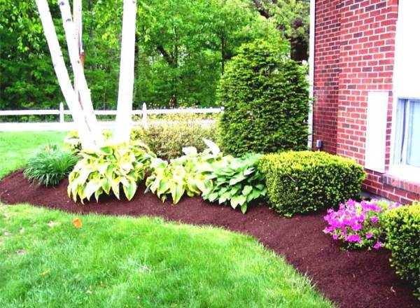 basic garden design ideas Landscape Design