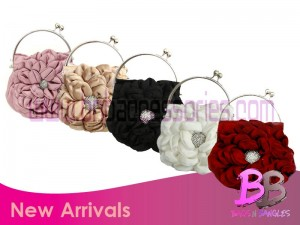 Bags and Clutches by BNB accessories (3)