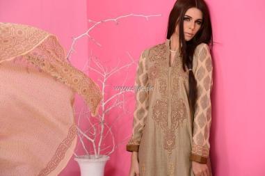 Aroshi Spring Summer Collection 2013 for Women 008