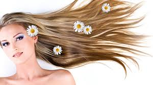 How Plant can help you Reduce Hair-fall