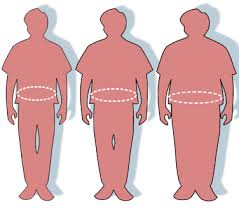 A New Obesity Study from a health perspective