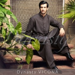 Dynasty Fabrics Menswear Collection 2014 For Winter 2