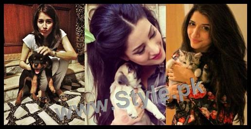 See Pictures of Pakistani Celebrities with their pets