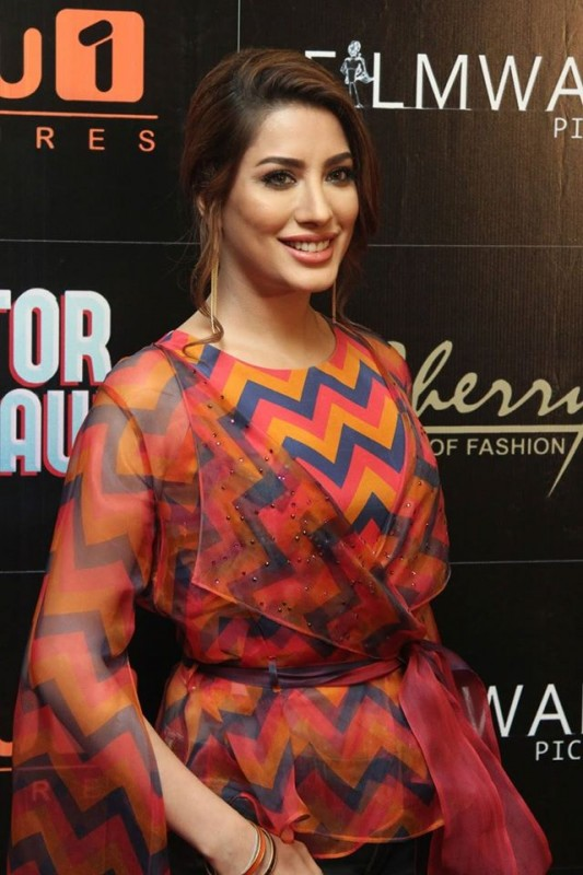 Pakistani Celebrities at the trailer launch of Actor in Law (26)