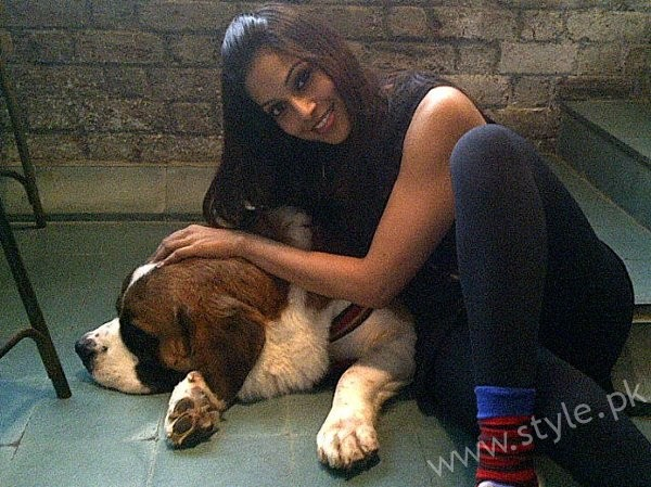Pictures Of Bollywood Celebrities And Their Pets006
