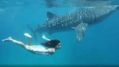 Katrina Kaif gives us a glimpse in Maldives