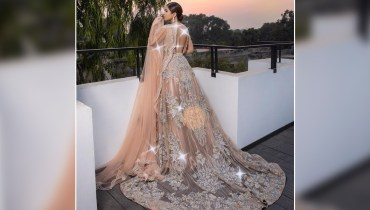 Ayesha Omar Dazzles In Backless Dress
