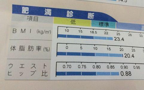 体脂肪率 2017年5月23日