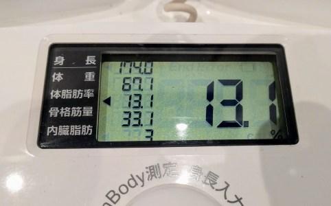 体脂肪率13%