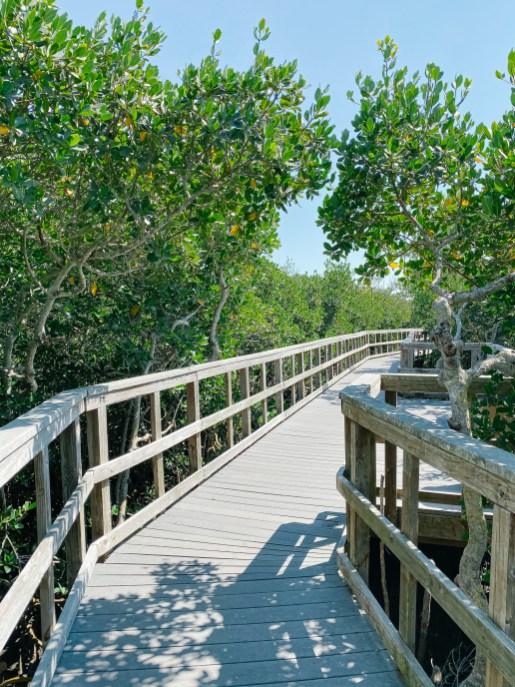 Mengrove Reserve