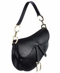Dior Saddle Bag - $600