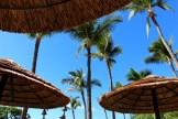 hyatt-regency-maui-resort-and-spa-review-12