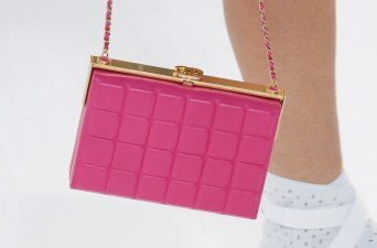 chanel-spring-2017-rtw-collection-minaudiere2