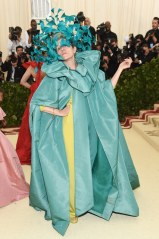met-gala-2018-frances-mcdormand