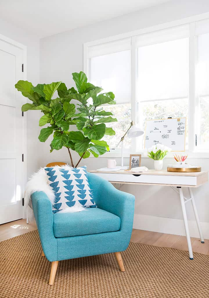 How Do You Do_Me Time_Office_Bright_Happy_Green_White Modern_2