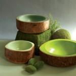 Giveaway: Bark Bowls From Burke Decor