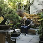 Design Diary: A Japanese Garden in Boston