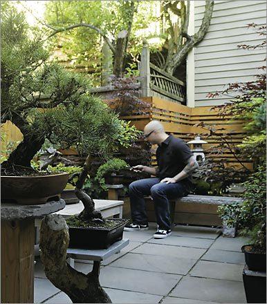 Design Diary A Japanese Garden In Boston Stylecarrot