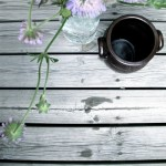 Sunday Bouquet: Purple Flowers on Faded Porch